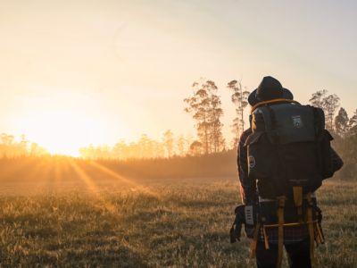 Wanderer in der Sonne, Pexels